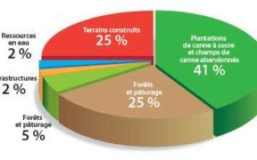 Diminution des terres plantées en canne | business-magazine.mu
