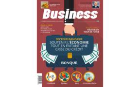 Secteur bancaire : soutenir l'économie tout en évitant une crise du crédit | business-magazine.mu