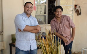 The Strawz - Les pailles en bambou font un carton | business-magazine.mu