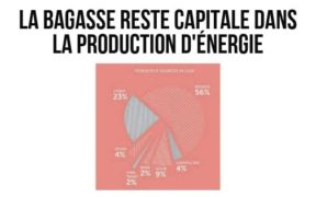 La bagasse reste capitale dans la production d'énergie | business-magazine.mu