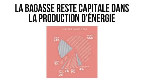 La bagasse reste capitale dans la production d'énergie | business-magazine.mu