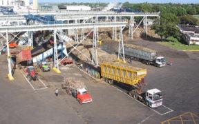 Omnicane prévoit de broyer 1 040 000 tonnes de canne | business-magazine.mu
