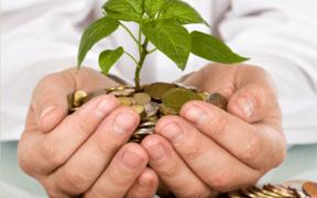 Boni de fin d'année Les meilleures options d'investissement   business-magazine.mu