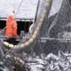 FiTEC : formation poussée aux techniques de pêche | business-magazine.mu