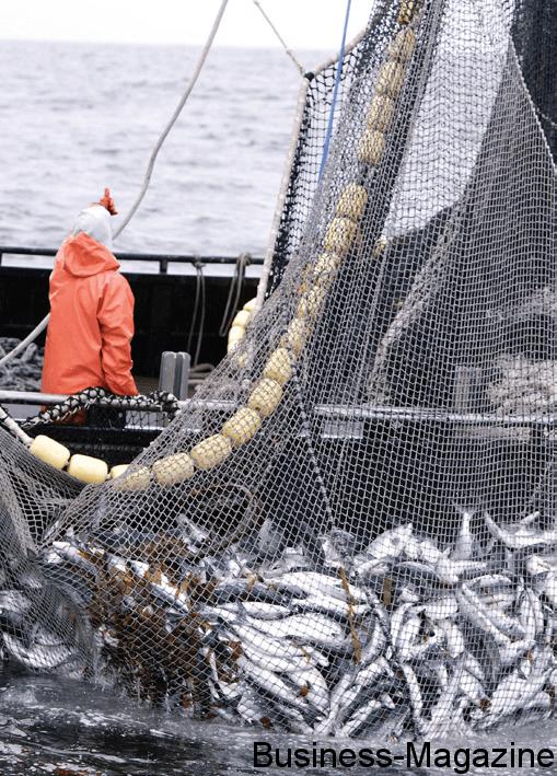 FiTEC : formation poussée aux techniques de pêche   business-magazine.mu