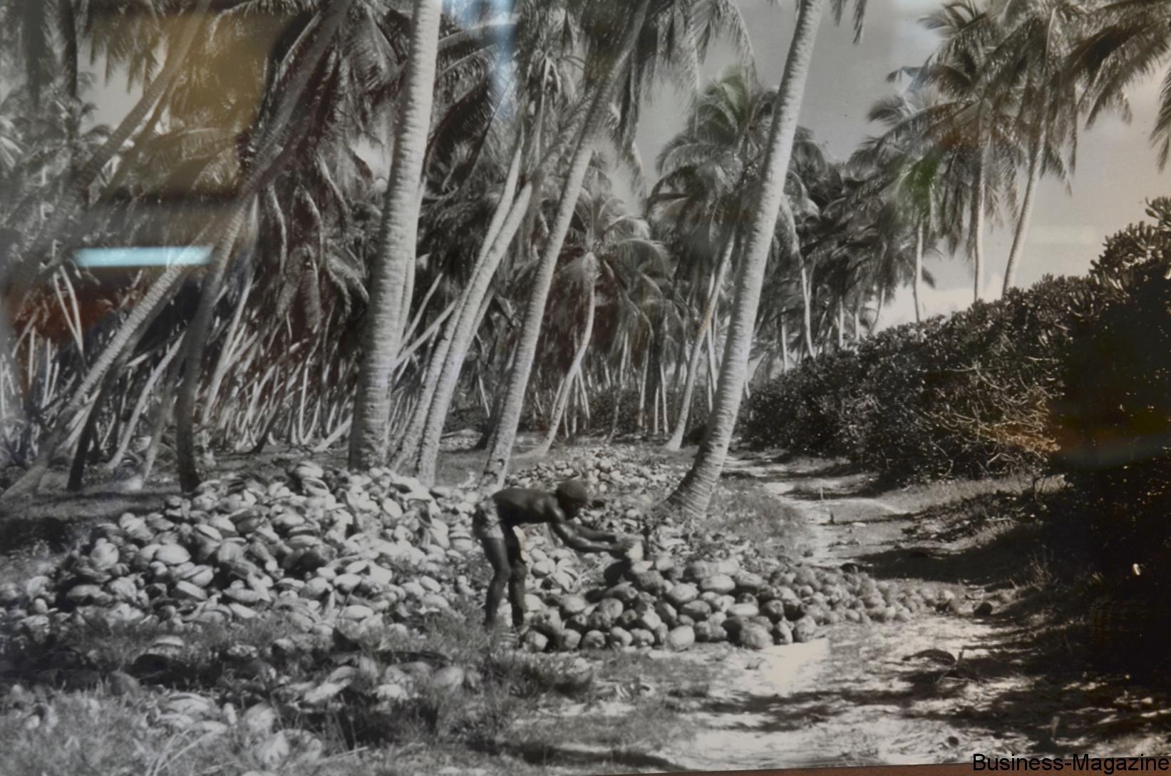 Il était une fois les Chagos | business-magazine.mu
