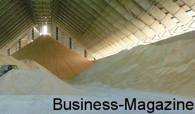 Le prix du sucre revu à la baisse | business-magazine.mu