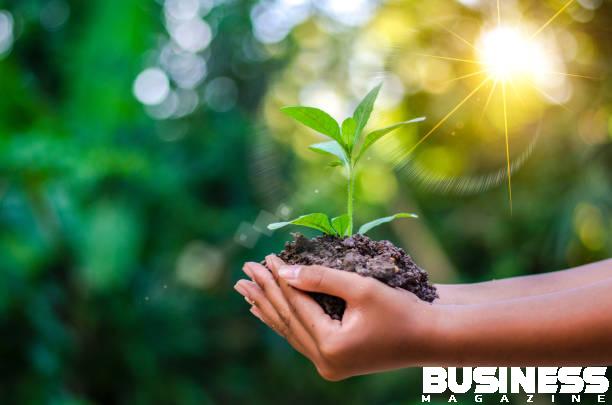 Illustrer les bénéfices environnementaux de la nouvelle classe d'obligations