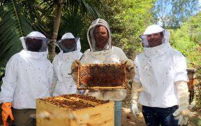 Le Miel de nos Jardins