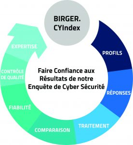 Birger CYIndex