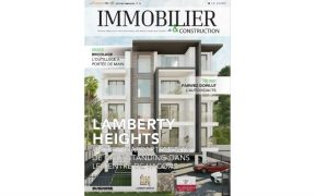 Immobillier & Construction